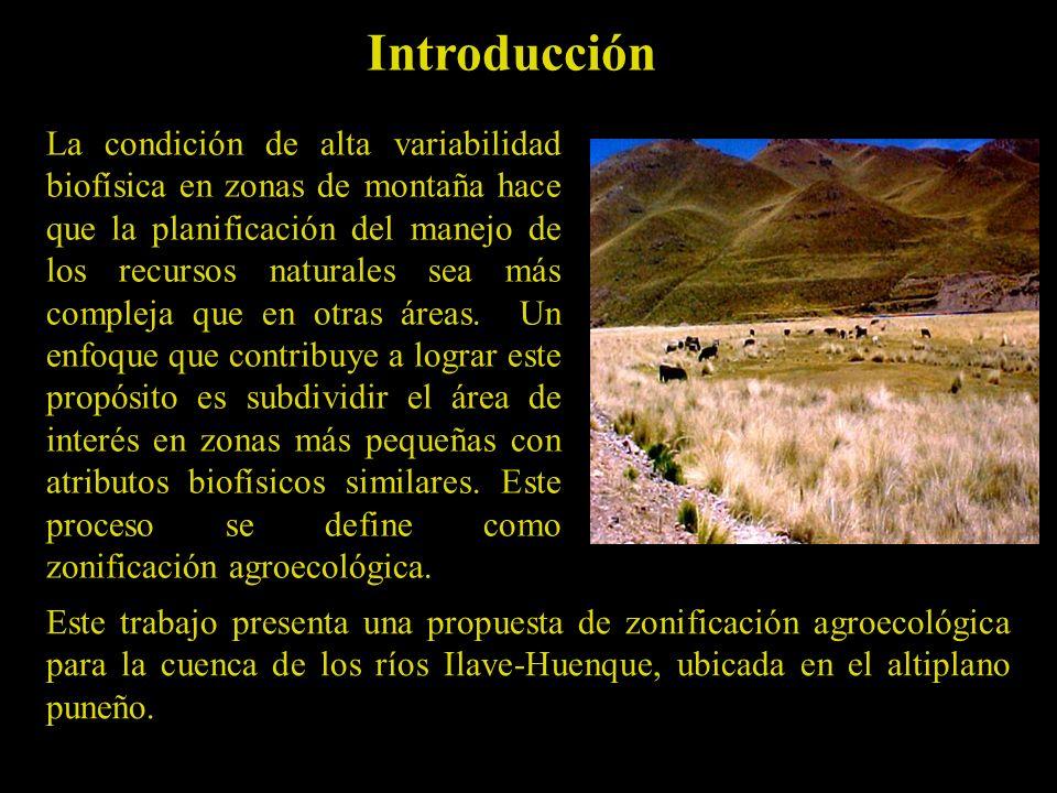 Este trabajo presenta una propuesta de zonificación agroecológica para la cuenca de los ríos Ilave-Huenque, ubicada en el altiplano puneño.