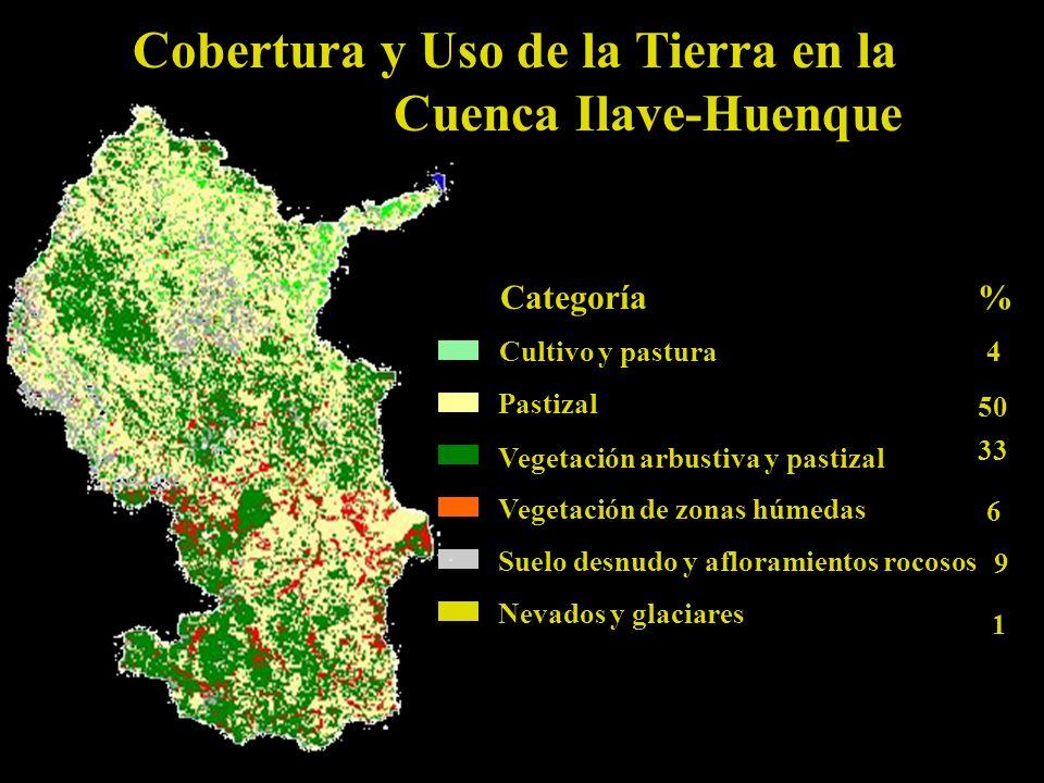 Cobertura y Uso de la Tierra en la Cuenca Ilave-Huenque Cultivo y pastura Pastizal Vegetación arbustiva y pastizal Vegetación de zonas húmedas Suelo desnudo y afloramientos rocosos Nevados y glaciares 4 50 33 6 9 1 %Categoría