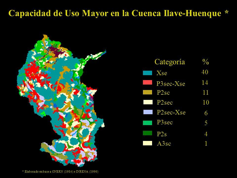 Capacidad de Uso Mayor en la Cuenca Ilave-Huenque * % Xse P3sec-Xse P2sc P2sec P2sec-Xse P3sec P2s A3sc Categoría 40 14 11 10 6 5 4 1 * Elaborado en base a ONERN (1984) e INRENA (1996)