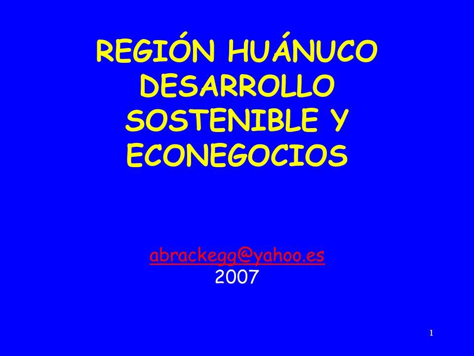 1 REGIÓN HUÁNUCO DESARROLLO SOSTENIBLE Y ECONEGOCIOS abrackegg@yahoo.es 2007
