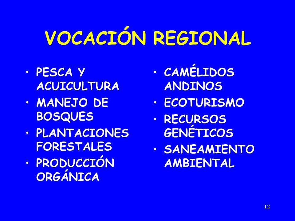 12 VOCACIÓN REGIONAL PESCA Y ACUICULTURA MANEJO DE BOSQUES PLANTACIONES FORESTALES PRODUCCIÓN ORGÁNICA CAMÉLIDOS ANDINOS ECOTURISMO RECURSOS GENÉTICOS SANEAMIENTO AMBIENTAL