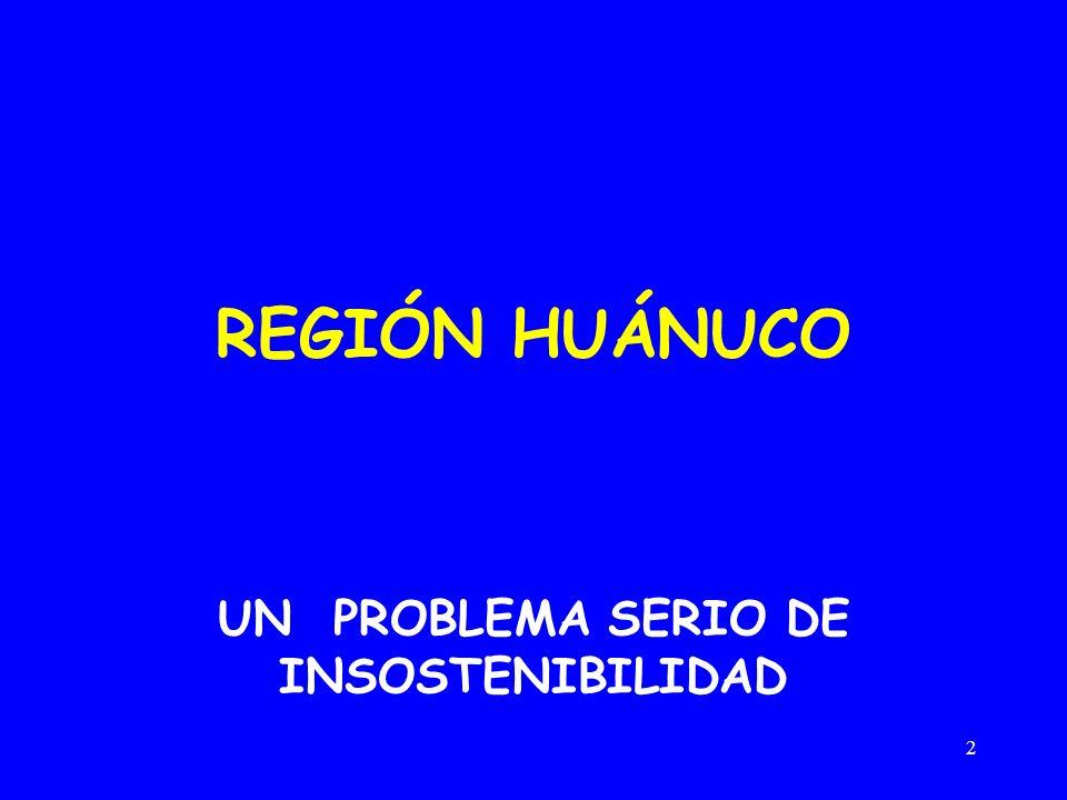 2 REGIÓN HUÁNUCO UN PROBLEMA SERIO DE INSOSTENIBILIDAD