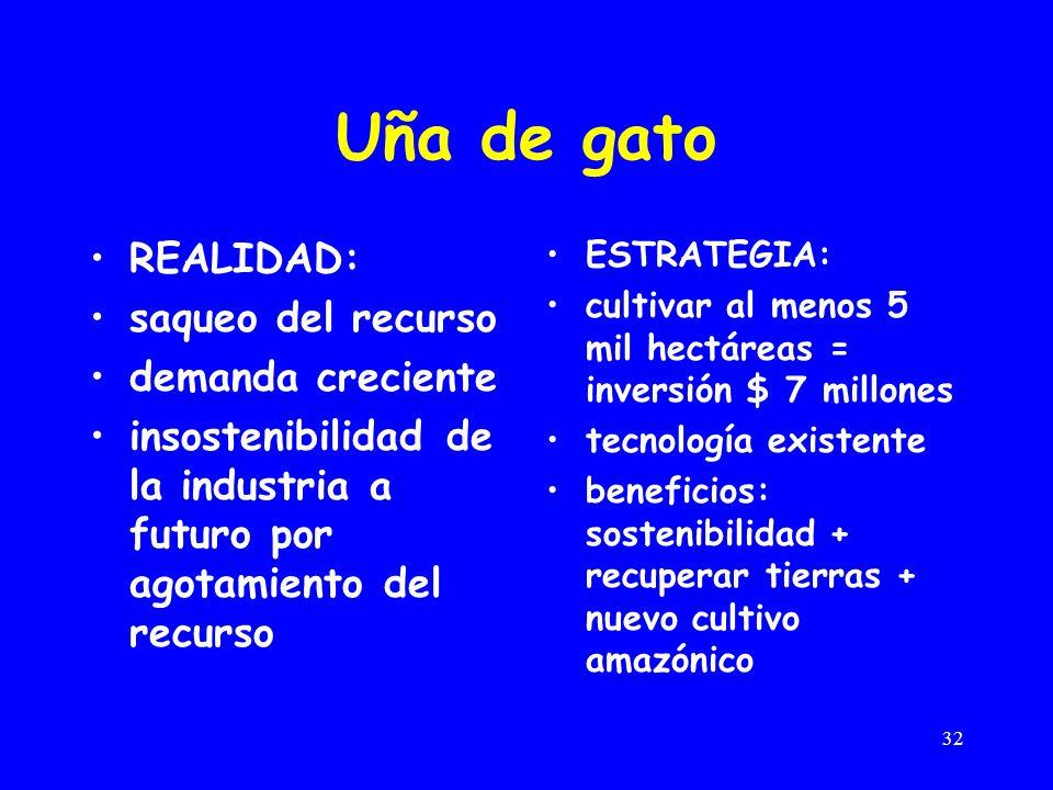 32 Uña de gato REALIDAD: saqueo del recurso demanda creciente insostenibilidad de la industria a futuro por agotamiento del recurso ESTRATEGIA: cultiv