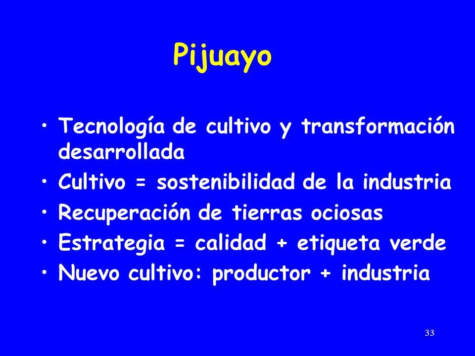 33 Pijuayo Tecnología de cultivo y transformación desarrollada Cultivo = sostenibilidad de la industria Recuperación de tierras ociosas Estrategia = calidad + etiqueta verde Nuevo cultivo: productor + industria