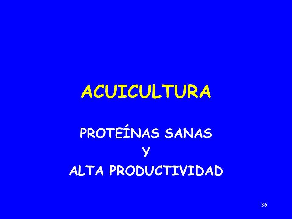 36 ACUICULTURA PROTEÍNAS SANAS Y ALTA PRODUCTIVIDAD