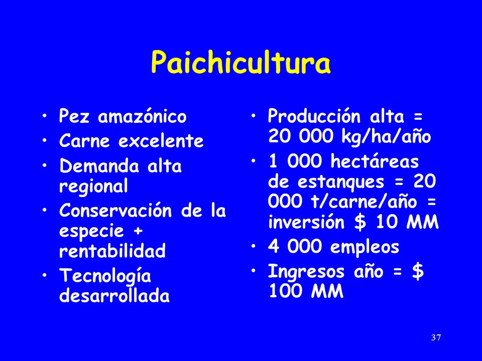 37 Paichicultura Pez amazónico Carne excelente Demanda alta regional Conservación de la especie + rentabilidad Tecnología desarrollada Producción alta = 20 000 kg/ha/año 1 000 hectáreas de estanques = 20 000 t/carne/año = inversión $ 10 MM 4 000 empleos Ingresos año = $ 100 MM