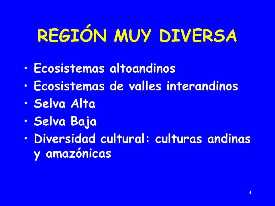 4 REGIÓN MUY DIVERSA Ecosistemas altoandinos Ecosistemas de valles interandinos Selva Alta Selva Baja Diversidad cultural: culturas andinas y amazónicas