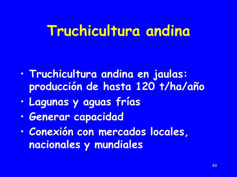 40 Truchicultura andina Truchicultura andina en jaulas: producción de hasta 120 t/ha/año Lagunas y aguas frías Generar capacidad Conexión con mercados