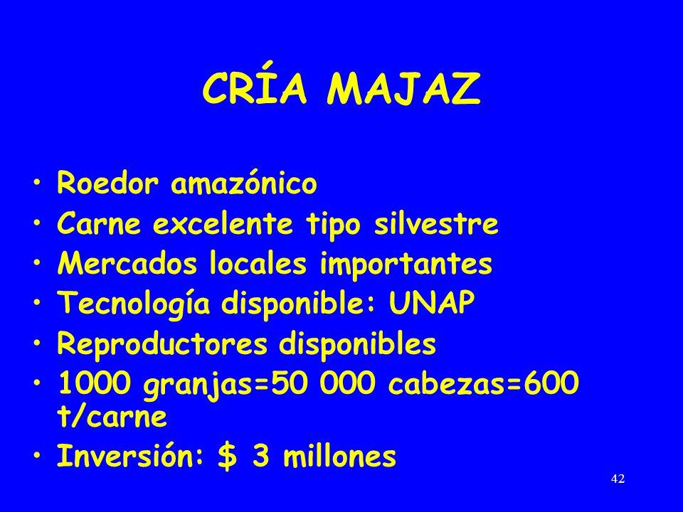 42 CRÍA MAJAZ Roedor amazónico Carne excelente tipo silvestre Mercados locales importantes Tecnología disponible: UNAP Reproductores disponibles 1000 granjas=50 000 cabezas=600 t/carne Inversión: $ 3 millones