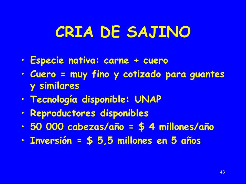 43 CRIA DE SAJINO Especie nativa: carne + cuero Cuero = muy fino y cotizado para guantes y similares Tecnología disponible: UNAP Reproductores disponibles 50 000 cabezas/año = $ 4 millones/año Inversión = $ 5,5 millones en 5 años
