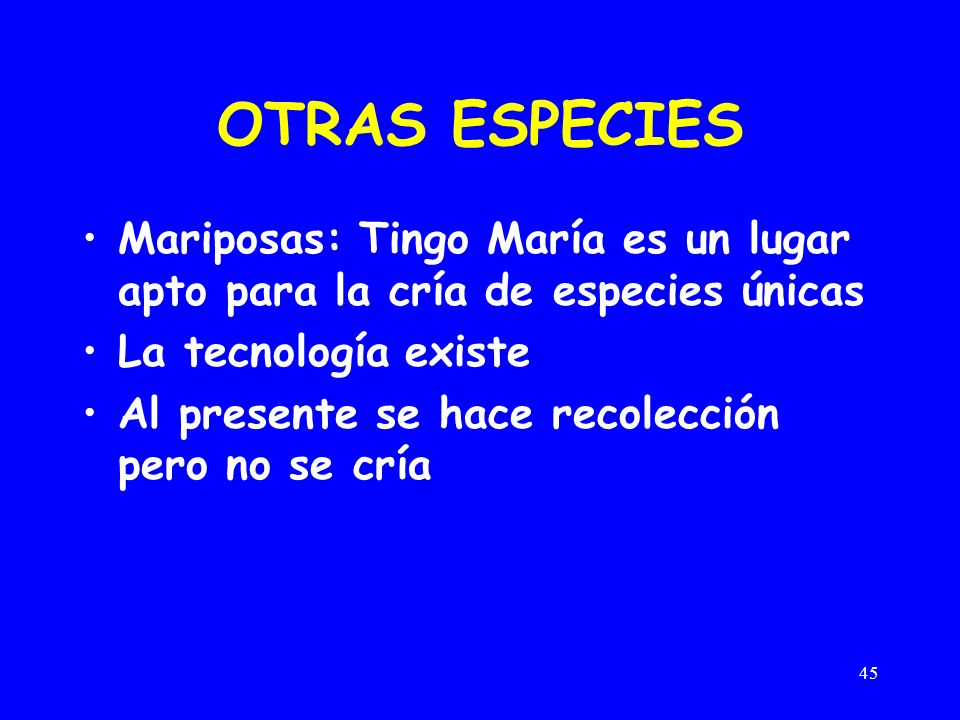 45 OTRAS ESPECIES Mariposas: Tingo María es un lugar apto para la cría de especies únicas La tecnología existe Al presente se hace recolección pero no se cría