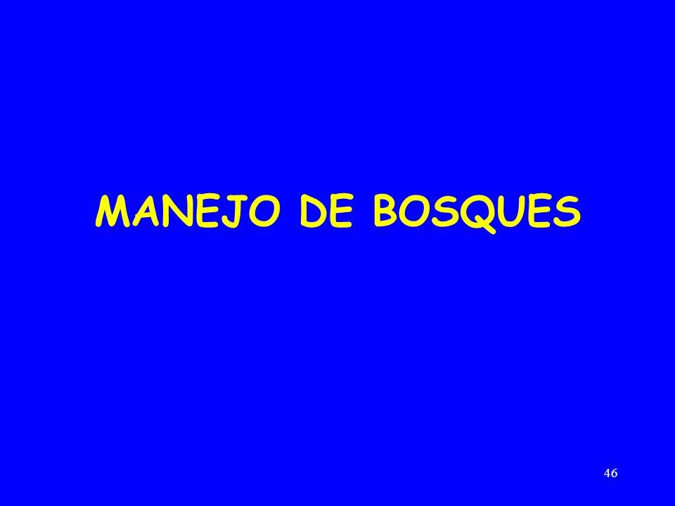 46 MANEJO DE BOSQUES