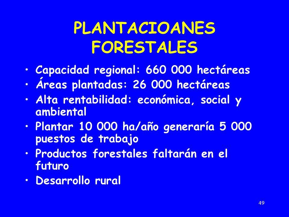 49 PLANTACIOANES FORESTALES Capacidad regional: 660 000 hectáreas Áreas plantadas: 26 000 hectáreas Alta rentabilidad: económica, social y ambiental Plantar 10 000 ha/año generaría 5 000 puestos de trabajo Productos forestales faltarán en el futuro Desarrollo rural
