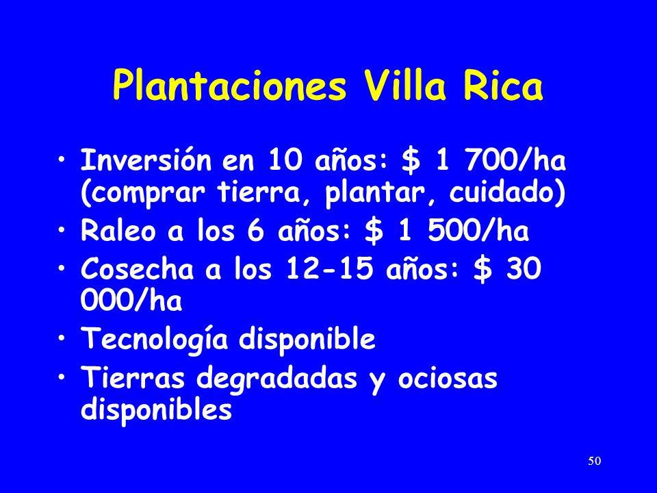 50 Plantaciones Villa Rica Inversión en 10 años: $ 1 700/ha (comprar tierra, plantar, cuidado) Raleo a los 6 años: $ 1 500/ha Cosecha a los 12-15 años: $ 30 000/ha Tecnología disponible Tierras degradadas y ociosas disponibles