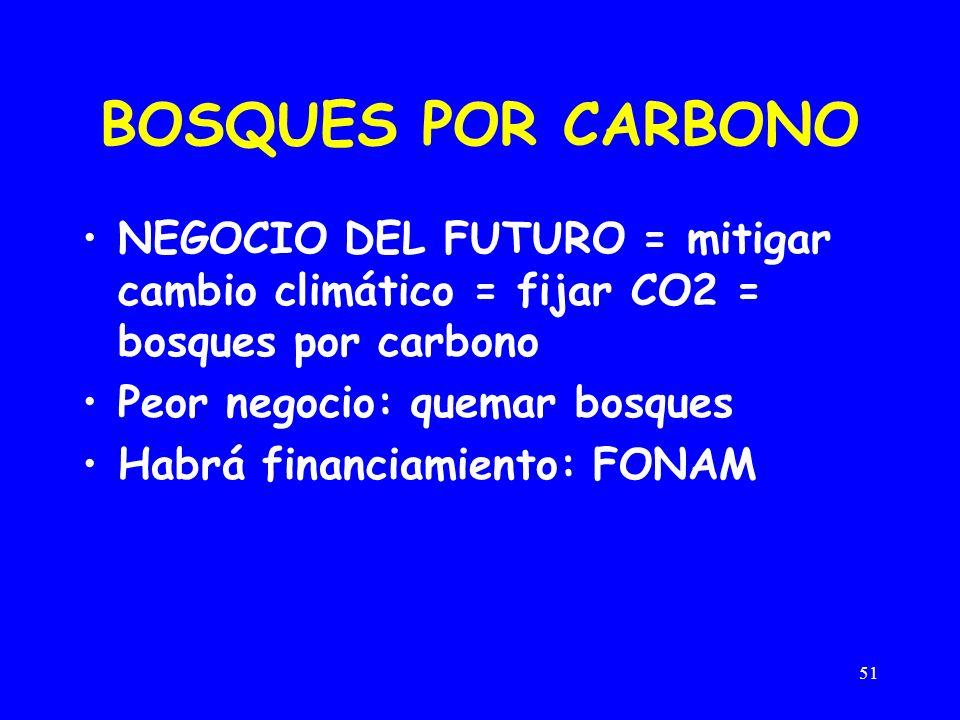 51 BOSQUES POR CARBONO NEGOCIO DEL FUTURO = mitigar cambio climático = fijar CO2 = bosques por carbono Peor negocio: quemar bosques Habrá financiamiento: FONAM
