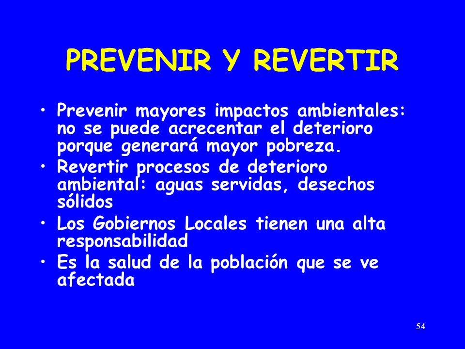 54 PREVENIR Y REVERTIR Prevenir mayores impactos ambientales: no se puede acrecentar el deterioro porque generará mayor pobreza. Revertir procesos de