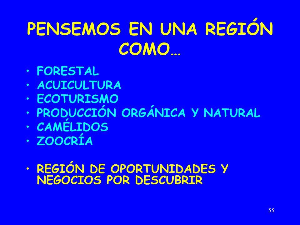 55 PENSEMOS EN UNA REGIÓN COMO… FORESTAL ACUICULTURA ECOTURISMO PRODUCCIÓN ORGÁNICA Y NATURAL CAMÉLIDOS ZOOCRÍA REGIÓN DE OPORTUNIDADES Y NEGOCIOS POR