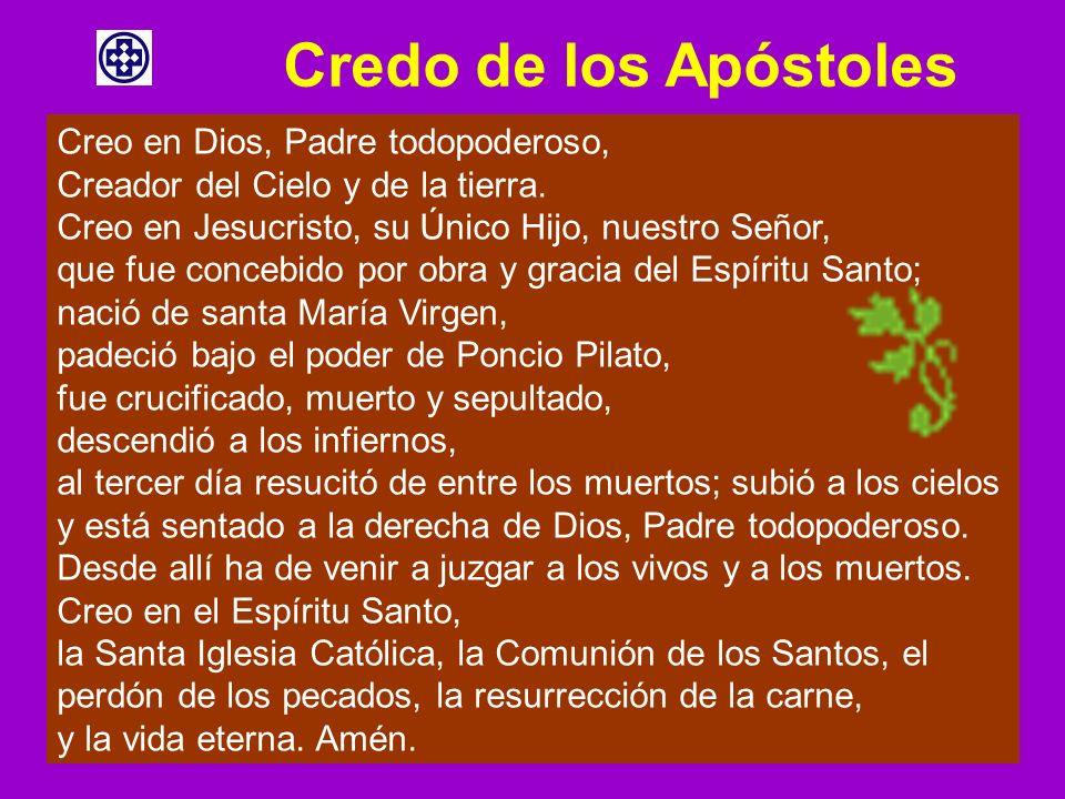 Credo de los Apóstoles Creo en Dios, Padre todopoderoso, Creador del Cielo y de la tierra. Creo en Jesucristo, su Único Hijo, nuestro Señor, que fue c