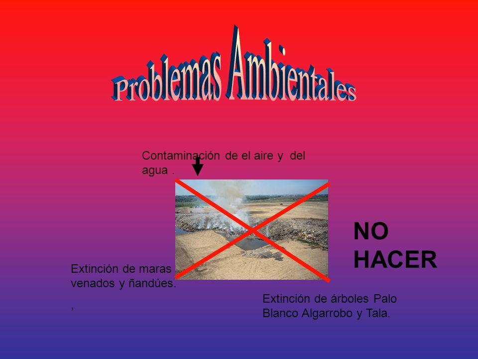 Contaminación de el aire y del agua. Extinción de maras venados y ñandúes., Extinción de árboles Palo Blanco Algarrobo y Tala. NO HACER