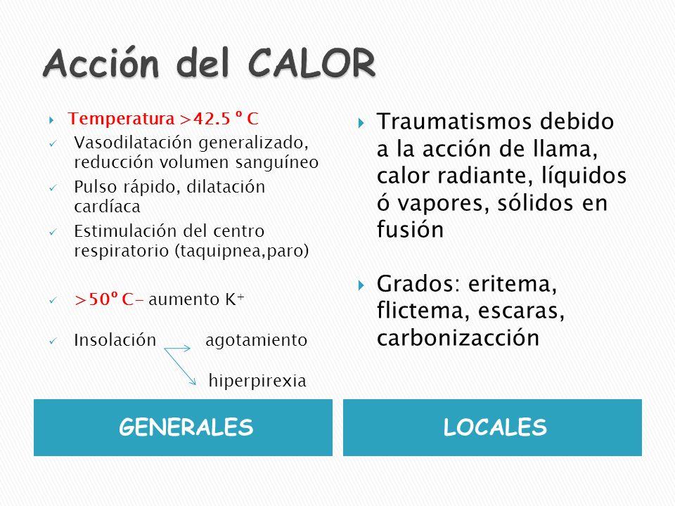 GENERALES LOCALES-heladuras Temperatura < 35 º C (hipotermia sistémica) AUTOPSIAS: dilatación cavidad derecha corazón, congestión de vena cava, espuma