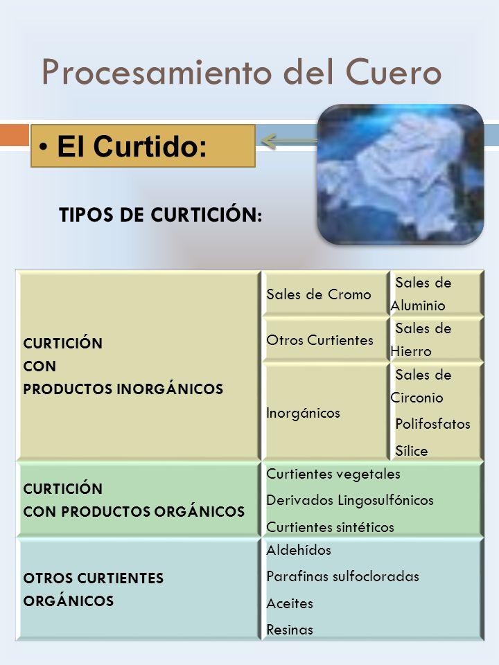 Procesamiento del Cuero El Curtido: CURTICIÓN CON PRODUCTOS INORGÁNICOS Sales de Cromo Sales de Aluminio Otros Curtientes Sales de Hierro Inorgánicos