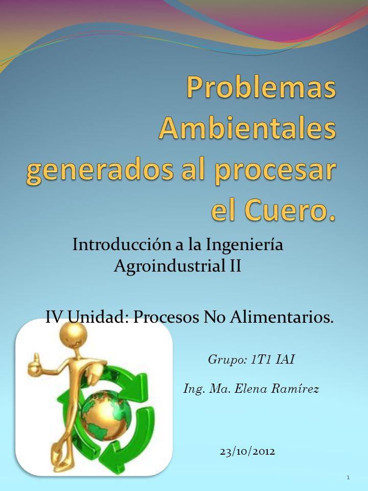 Introducción a la Ingeniería Agroindustrial II IV Unidad: Procesos No Alimentarios. Grupo: 1T1 IAI Ing. Ma. Elena Ramírez 23/10/2012 1