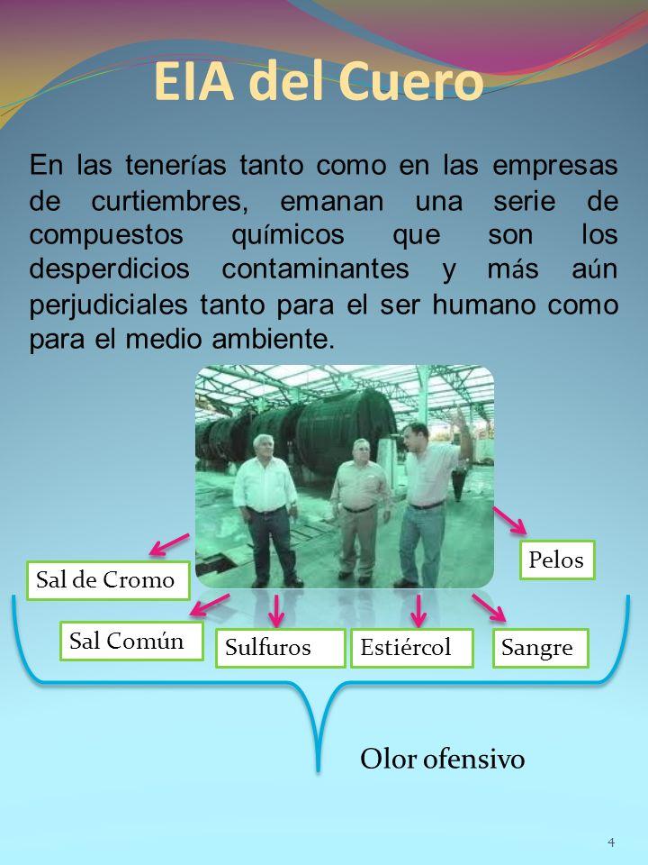 EIA del Cuero 4 En las tener í as tanto como en las empresas de curtiembres, emanan una serie de compuestos qu í micos que son los desperdicios contaminantes y m á s a ú n perjudiciales tanto para el ser humano como para el medio ambiente.