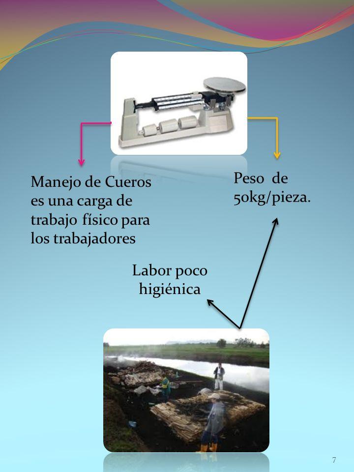 7 Manejo de Cueros es una carga de trabajo físico para los trabajadores Peso de 50kg/pieza. Labor poco higiénica