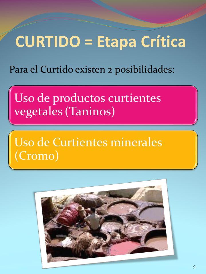 CURTIDO = Etapa Crítica Para el Curtido existen 2 posibilidades: 9 Uso de productos curtientes vegetales (Taninos) Uso de Curtientes minerales (Cromo)