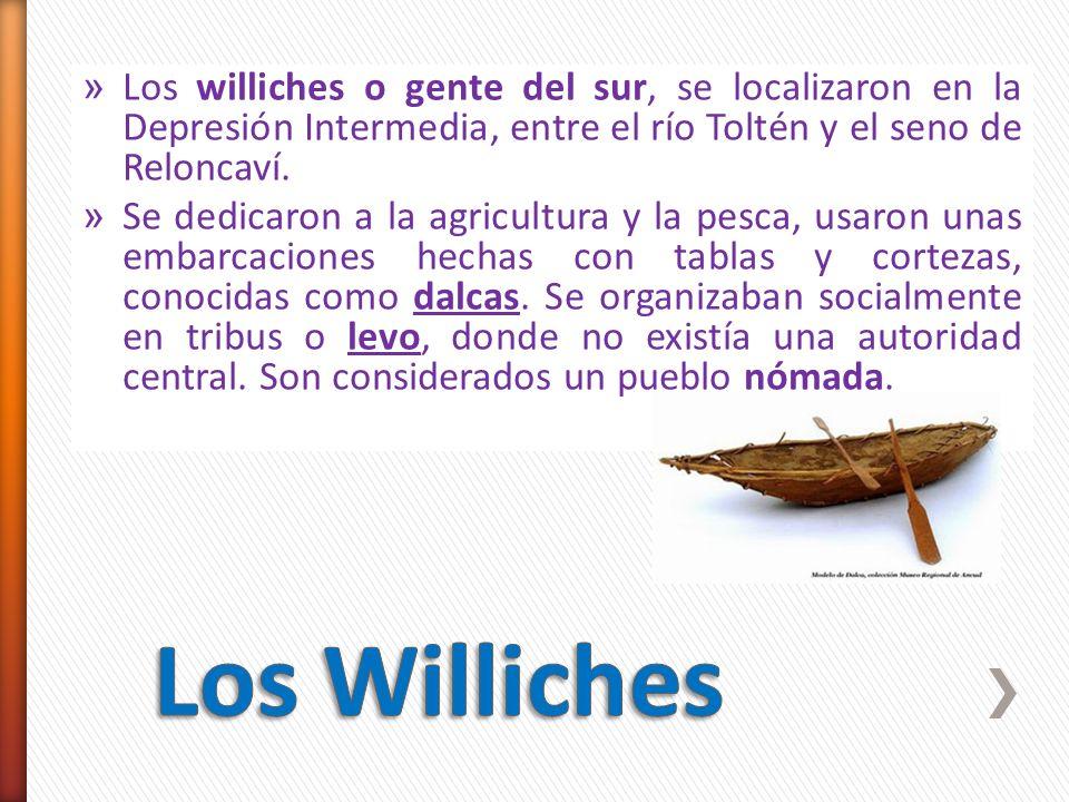 » Los williches o gente del sur, se localizaron en la Depresión Intermedia, entre el río Toltén y el seno de Reloncaví. » Se dedicaron a la agricultur