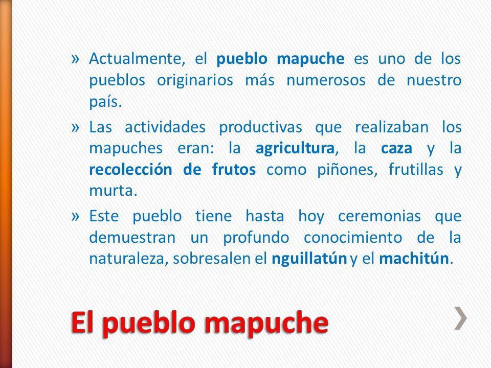 » Actualmente, el pueblo mapuche es uno de los pueblos originarios más numerosos de nuestro país. » Las actividades productivas que realizaban los map