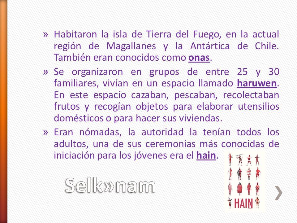 » Habitaron la isla de Tierra del Fuego, en la actual región de Magallanes y la Antártica de Chile. También eran conocidos como onas. » Se organizaron
