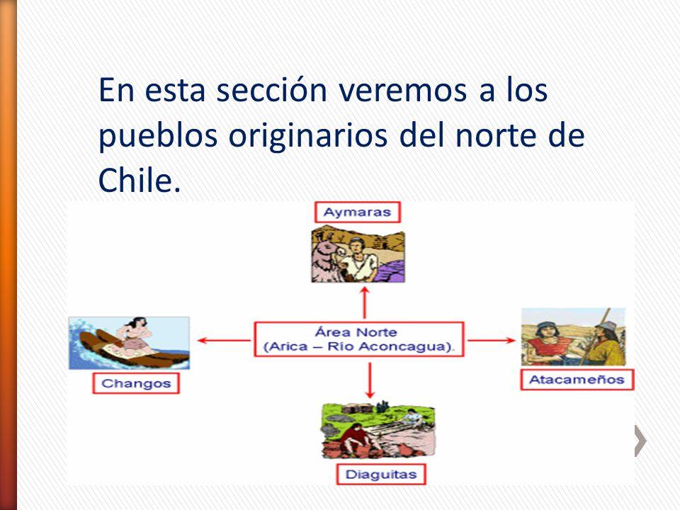 En esta sección veremos a los pueblos originarios del norte de Chile.