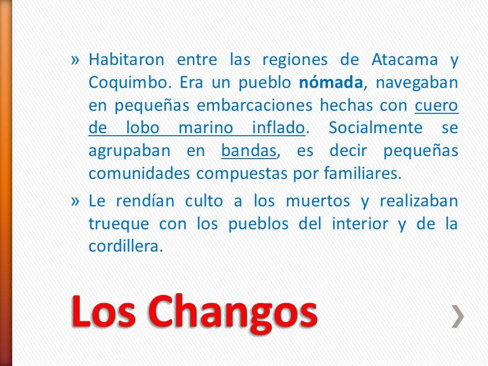 » Habitaron entre las regiones de Atacama y Coquimbo. Era un pueblo nómada, navegaban en pequeñas embarcaciones hechas con cuero de lobo marino inflad
