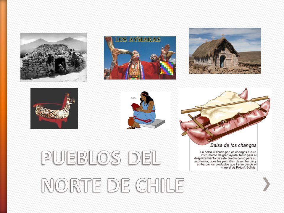 » Habitaron la zona más austral de Chile, entre el canal de Beagle y el Cabo de Hornos, en la actual región de Magallanes y la Antártica chilena.