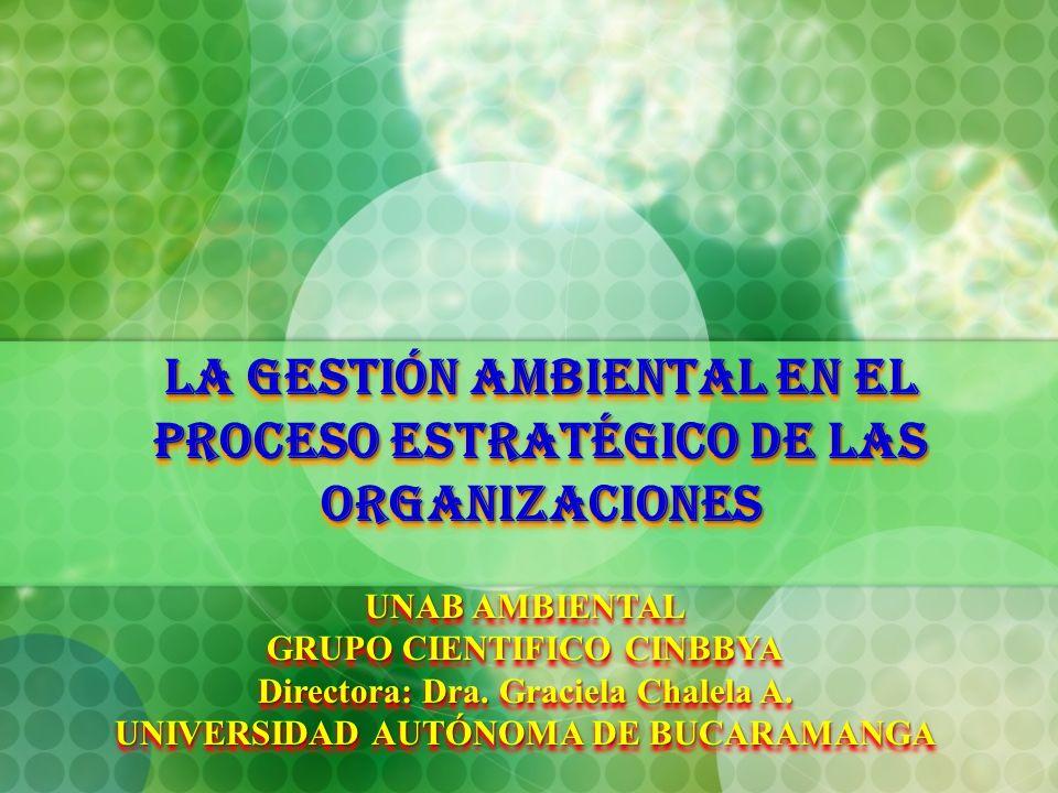 LA GESTIÓN AMBIENTAL EN EL PROCESO ESTRATÉGICO DE LAS ORGANIZACIONES UNAB AMBIENTAL GRUPO CIENTIFICO CINBBYA Directora: Dra. Graciela Chalela A. UNIVE