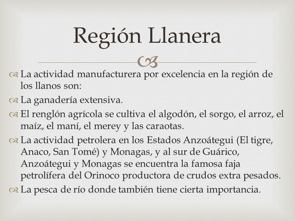 La actividad manufacturera por excelencia en la región de los llanos son: La ganadería extensiva.
