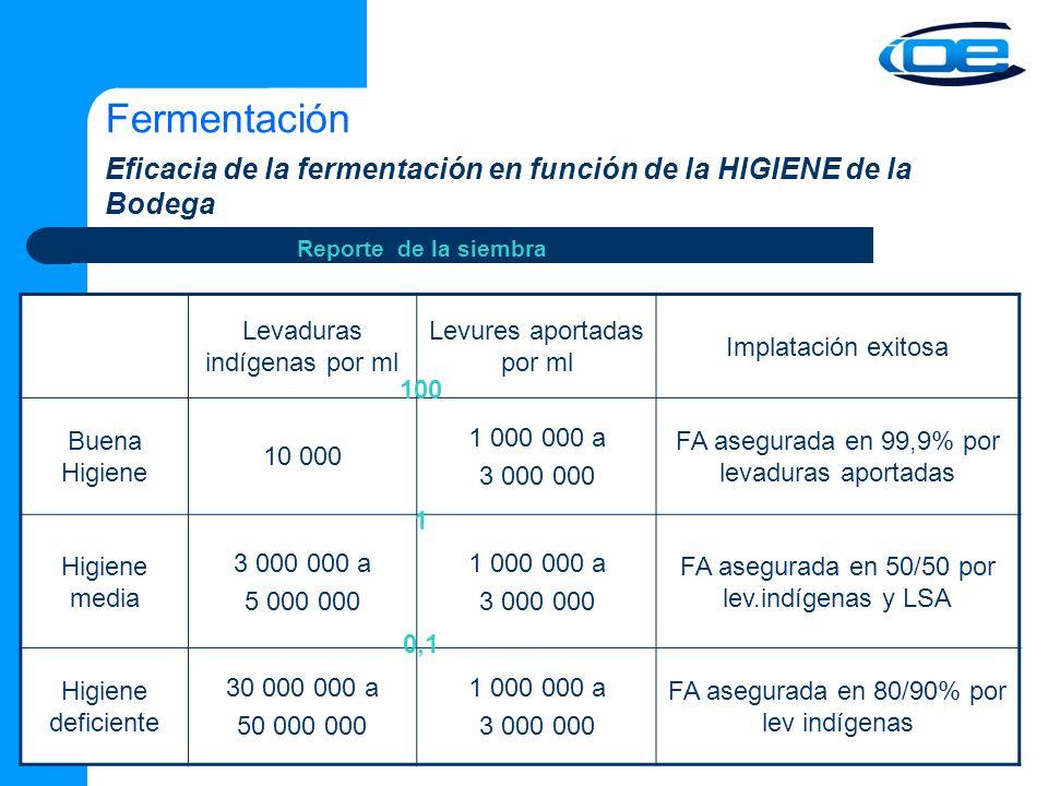 Fermentación Eficacia de la fermentación en función de la HIGIENE de la Bodega Levaduras indígenas por ml Levures aportadas por ml Implatación exitosa Buena Higiene 10 000 1 000 000 a 3 000 000 FA asegurada en 99,9% por levaduras aportadas Higiene media 3 000 000 a 5 000 000 1 000 000 a 3 000 000 FA asegurada en 50/50 por lev.indígenas y LSA Higiene deficiente 30 000 000 a 50 000 000 1 000 000 a 3 000 000 FA asegurada en 80/90% por lev indígenas Reporte de la siembra 100 1 0,1