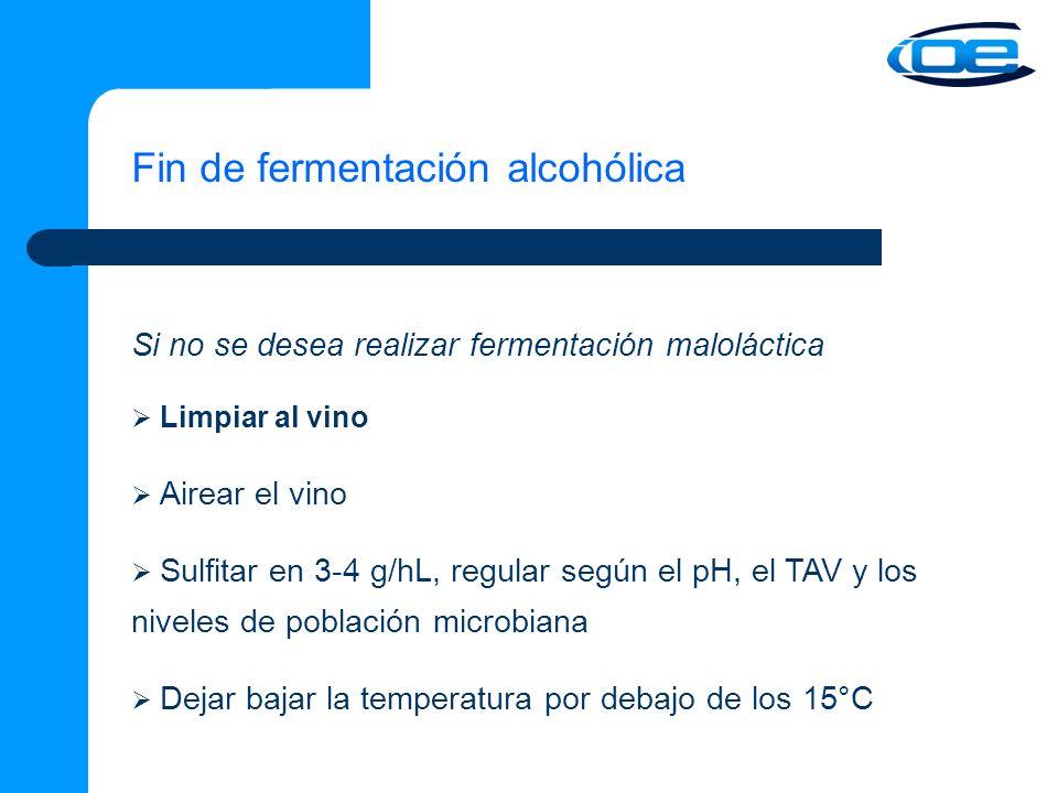 Fin de fermentación alcohólica Si no se desea realizar fermentación maloláctica Limpiar al vino Airear el vino Sulfitar en 3-4 g/hL, regular según el pH, el TAV y los niveles de población microbiana Dejar bajar la temperatura por debajo de los 15°C