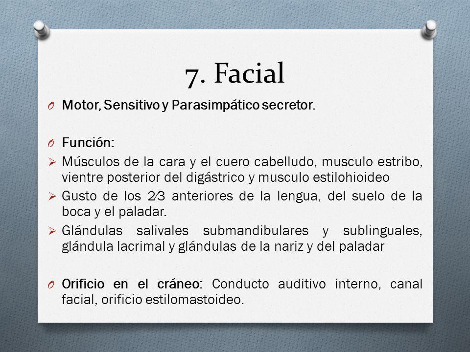 7. Facial O Motor, Sensitivo y Parasimpático secretor. O Función: Músculos de la cara y el cuero cabelludo, musculo estribo, vientre posterior del dig