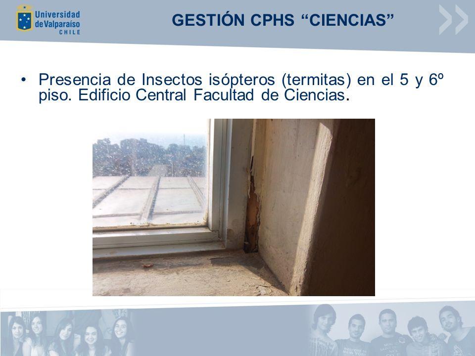 GESTIÓN CPHS CIENCIAS Presencia de Insectos isópteros (termitas) en el 5 y 6º piso. Edificio Central Facultad de Ciencias.