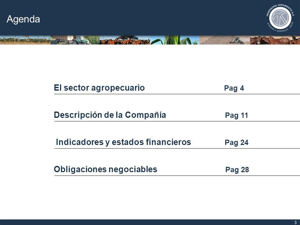 4 El sector agropecuario Descripción de la Compañía Indicadores y estados financieros Obligaciones negociables