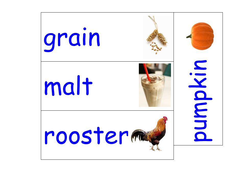 malt pumpkin rooster grain