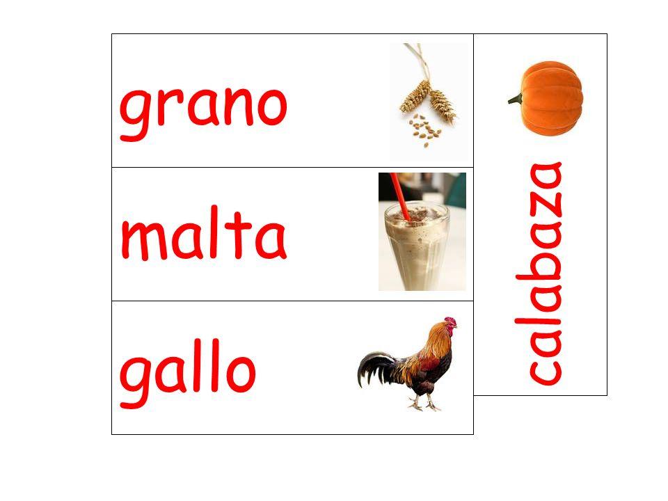 malta calabaza gallo grano