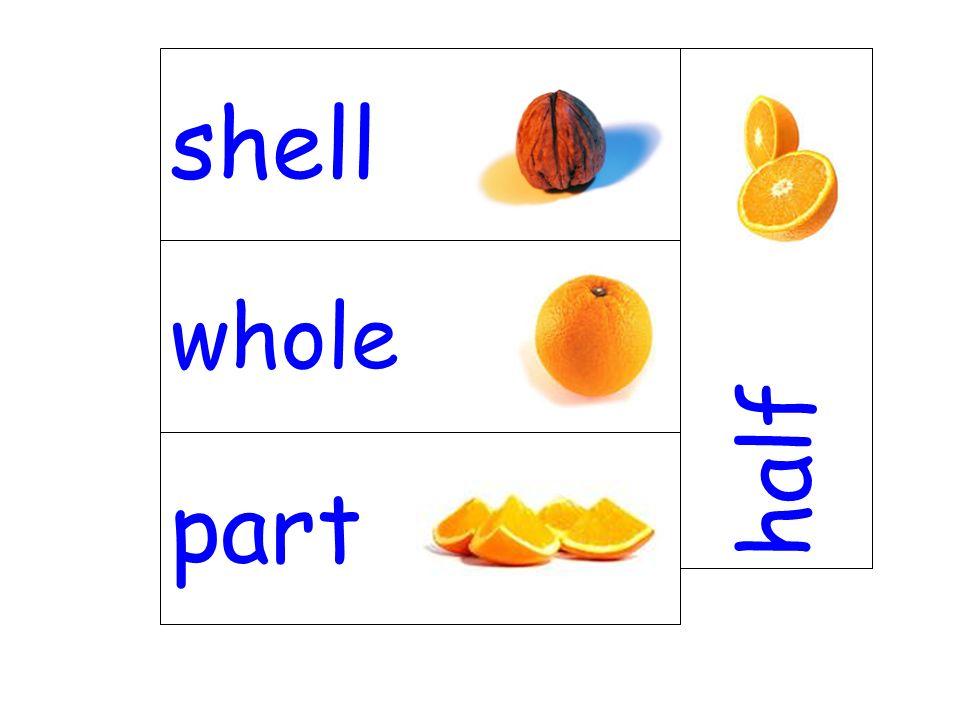 whole half part shell