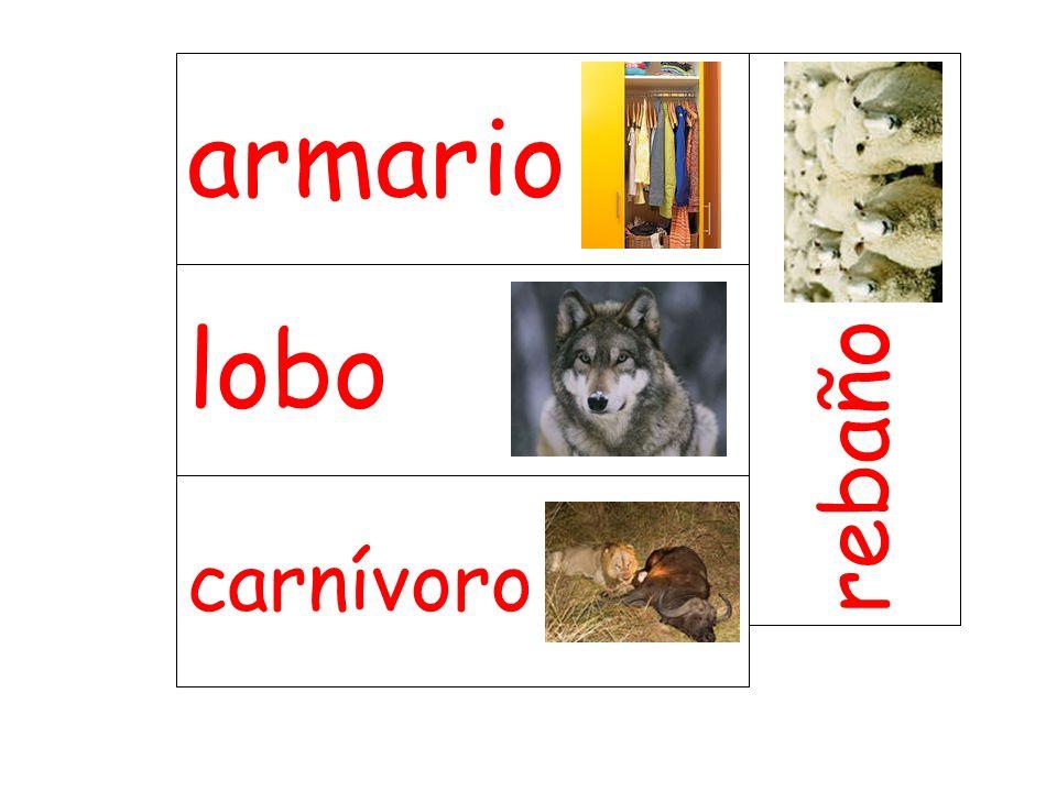 lobo rebaño carnívoro armario