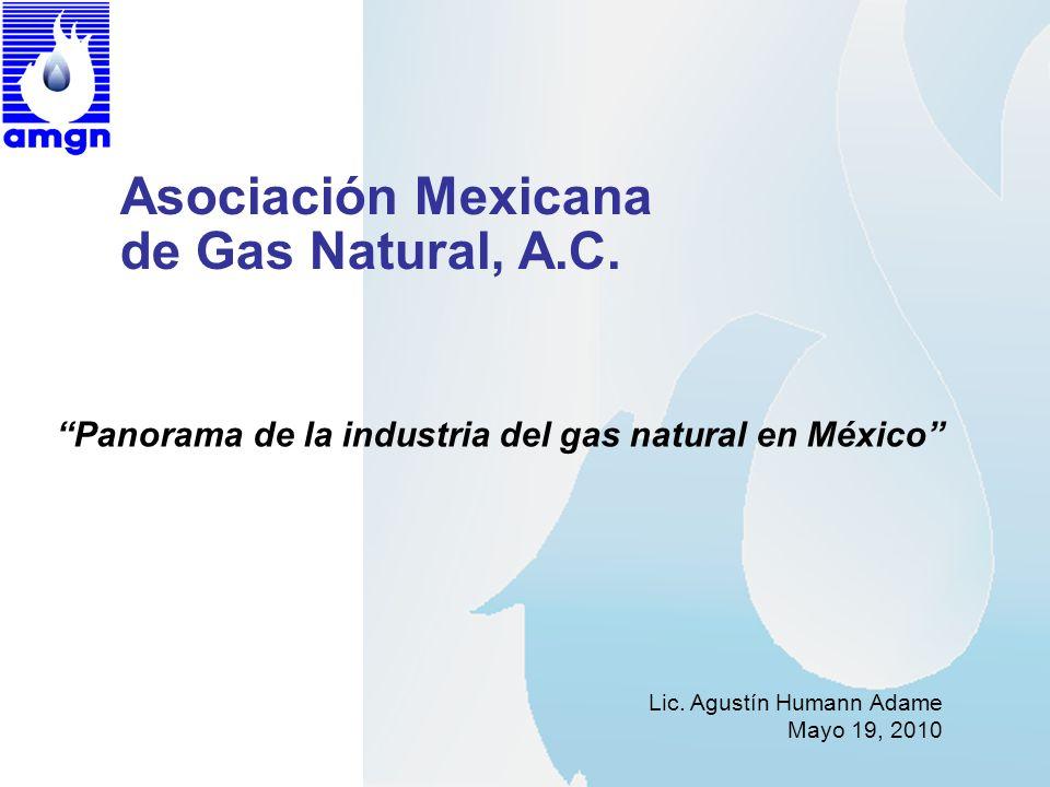 Asociación Mexicana de Gas Natural, A.C. Lic. Agustín Humann Adame Mayo 19, 2010 Panorama de la industria del gas natural en México