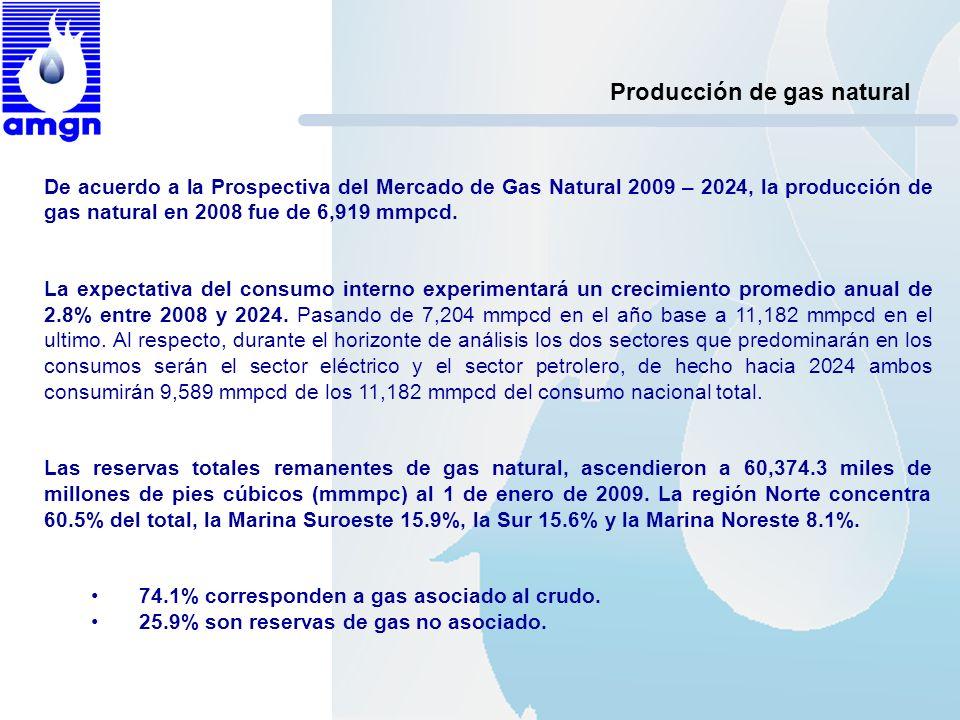 Producción de gas natural De acuerdo a la Prospectiva del Mercado de Gas Natural 2009 – 2024, la producción de gas natural en 2008 fue de 6,919 mmpcd.