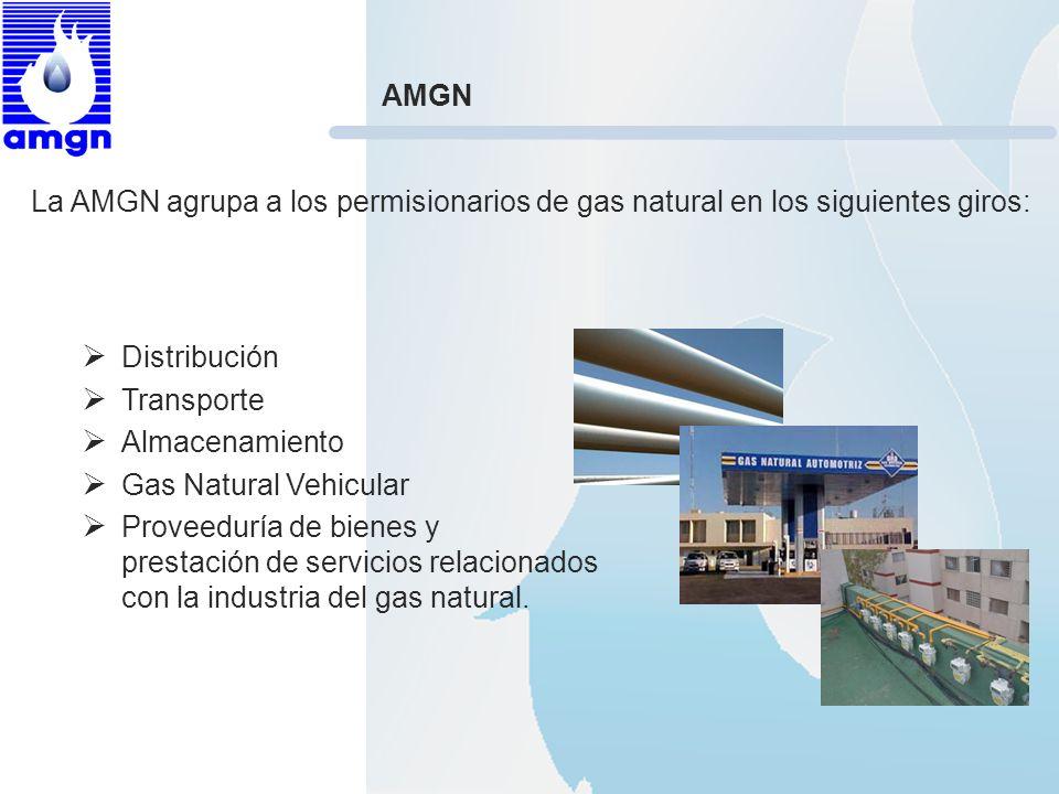 Distribución Transporte Almacenamiento Gas Natural Vehicular Proveeduría de bienes y prestación de servicios relacionados con la industria del gas nat