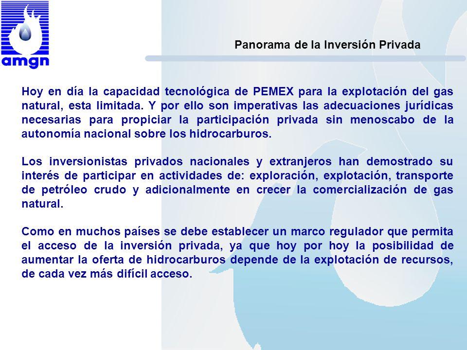 Panorama de la Inversión Privada Hoy en día la capacidad tecnológica de PEMEX para la explotación del gas natural, esta limitada. Y por ello son imper